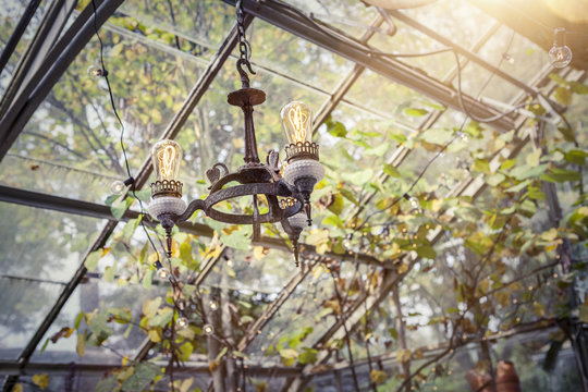 Antique chandelier with Edison bulbs