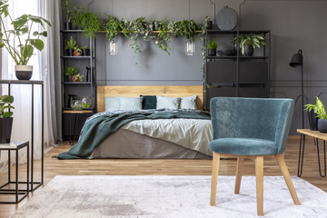 Green velvet armchair standing on white carpet in grey bedroom interior with fresh plants, king-size bed with wooden headboard and black metal furniture