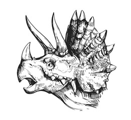 Sketch of a dinosaur head with an open mouth. Hand drawn illustration converted to vector