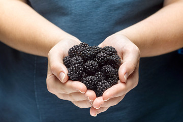 Closeup of a girl holding a blackberry berries in hands.