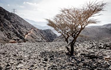 Al Hajar Mountains of Fujairah