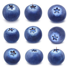 Collection of blueberries isolated on a white.