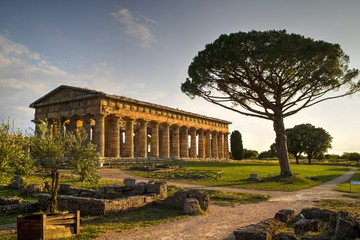 Tuinposter Athene The ancient ruins of Paestum