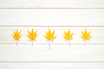 Autumn frame for your idea and text. Autumn fallen dry leaves of yellow, lined in a row in the middle on a wooden board of white color. The pattern of autumn. View from above