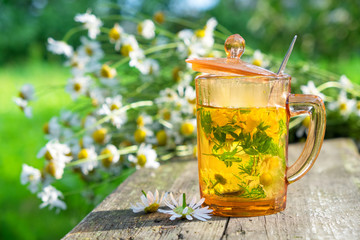Healthy herbal tea cup and daisy herbs bunches on wooden board outdoors.