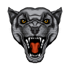angry panther head vector illustration