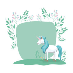 frame decorative with unicorn and flowers vector illustration design