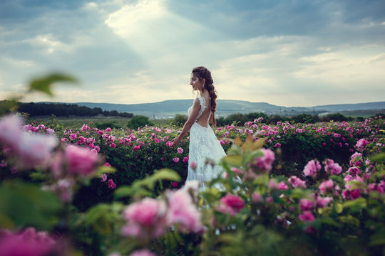 Beautiful woman in a floral park, garden roses. Makeup, hair, a wreath of roses.