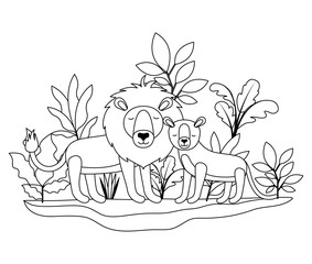 wild lions couple in the jungle vector illustration design
