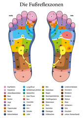 Foot reflexology. German names. Alternative acupressure and physiotherapy health treatment. Zone massage chart with colored areas. Numbering and listing of names of internal organs and body parts.