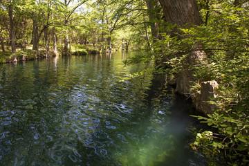 Blue Hole Regional Park - Wimberley Texas