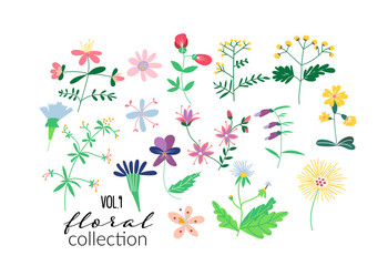 wild flower meadow illustration.vector floral elements. romantic hand drawn flowers and leaves collection.