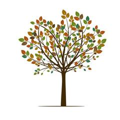 Autumn Tree. Vector Illustration.