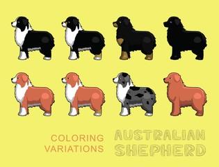 Dog Australian Shepherd Coloring Variations Vector Illustration