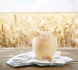 Piggy bank with money and field on background