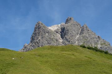 Wanderweg zum Steingässler, Flums, Kleinberg
