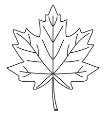 Line art black and white maple leaf