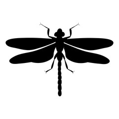 isolated, dragonfly silhouette