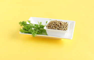 Coriander seeds, and leaves, which are a healthy food, in a ceramic bowl, on a tray.