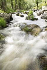 water running down rapids of a river with stones photographed at low speed to give silk effect