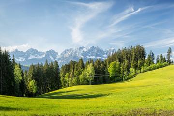 Printed roller blinds Khaki Landschaft mit Wiese und Wilder Kaiser Gebirge im Hintergrund