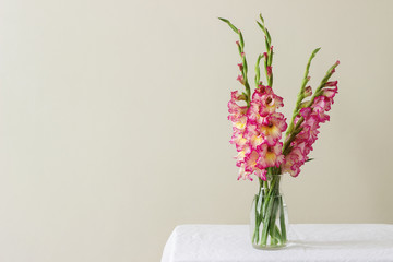 A bouquet of multicolored gladioli in a glass vase on a light background. Greeting card.