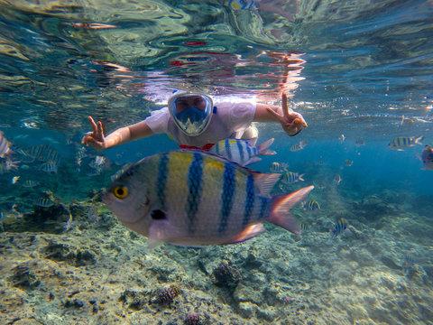 Woman snorkeling in blue water. Snorkel shows thumb in full face mask. Summer activity. Beautiful girl in sea water. Underwater photo of oceanic landscape. Seaside adventure. Water sport in tropic sea