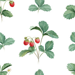 Watercolor illustration of strawberry bush. Seamless pattern