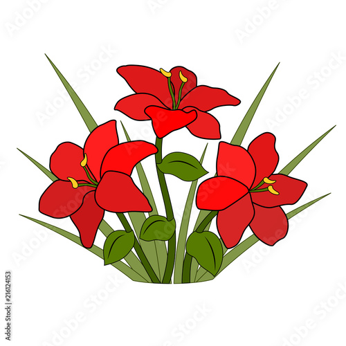 A Bouquet Or A Bed Of Orange Flowers Six Petals A Green Leaf And