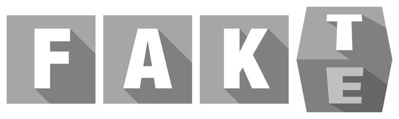 Fakt/Fake grau