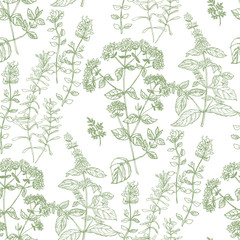 Hand drawn herbal sketch seamless pattern for fabric