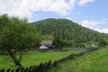mountain landscapes among fields and green trees