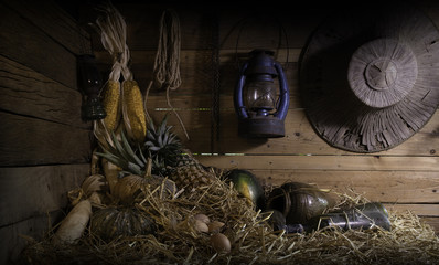 Still life style image of Pumpkin, pineapple, watermelon, chicken eggs, corn dry on pile straw in the old barn which has dim light.