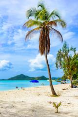 Valley Church Beach, paradise bay at tropical island Antigua in the Caribbean Sea