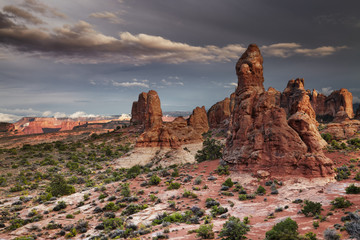 Wall Mural - Arches National Park