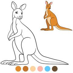 Color me: kangaroo. Cute beautiful kangaroo smiles.