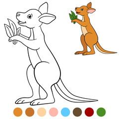 Color me: kangaroo. Little cute baby kangaroo smiles.