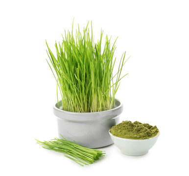 Fresh wheat grass in pot with powder on white background