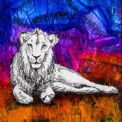 White lion drawing on colourful blue green background. Original artwork mixed media collage.