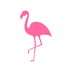 Pink flamingo. Exotic tropical bird. Pink flamingo vector silhouette. Decoration element. Vector illustration isolated