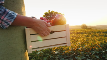 The farmer is carrying a wooden box with fresh vegetables. Goes along the field at sunset. Fresh vegetables directly from the field concept Wall mural