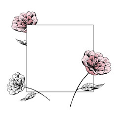 Border with peonies. Square floral frame. Hand drawn ink illustration in line art style. Botanical label. For invitations, greeting cards, natural cosmetics, prints, posters, packing and tea.