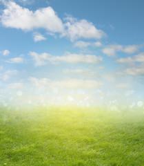 Spring grass and sky