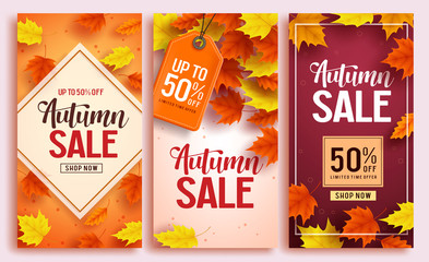 Autumn sale vector poster design set with colorful maple leaves element in background and sale discount text for fall season shopping promotion. Vector illustration.