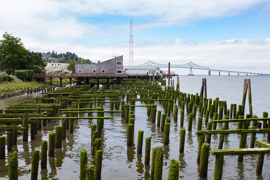 Old pier covered in moss in Astoria, Oregon.