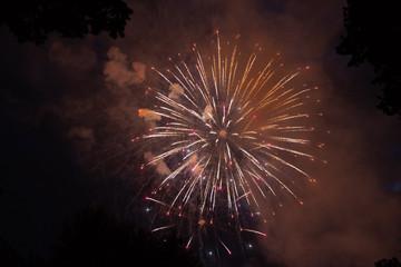 Bright fireworks against the black sky