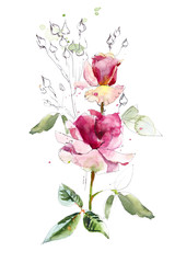 Pattern from pink rose. Wedding drawings. Watercolor painting. Greeting cards. Flower backdrop. Sketch