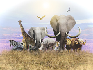 Animals of Africa and a domestic cat leave the heat. Wallpapers for walls and interior. 3D rendering.
