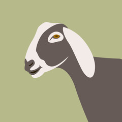 goat  head  vector illustration flat style  profile