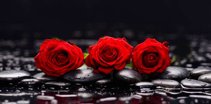 Still life with three red rose and wet stones